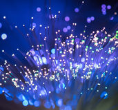 Optical fibres Stock Image