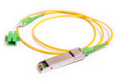 Optical gigabit SFP module for network Royalty Free Stock Image