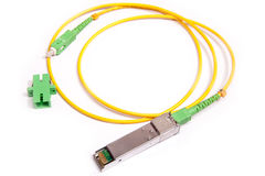 Optical gigabit SFP module for network Stock Images