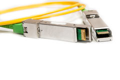Optical gigabit SFP module for network Royalty Free Stock Photos