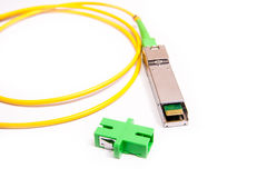 Optical gigabit SFP module for network Stock Photography
