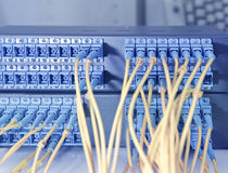 Optical network cables and servers Royalty Free Stock Image