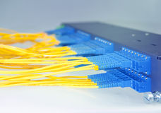 Optical network cables and servers Stock Image