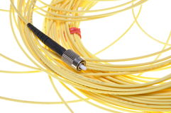 Optical patch cord standard PC Royalty Free Stock Photo