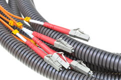 Optical patch cords in protective corrugated pipe Stock Photography