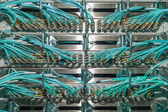 Optical Patch panel in a data center für Cloud Services Royalty Free Stock Photos