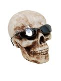 Optical skull Royalty Free Stock Photos