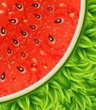 Optical watermelon background pattern. Vector illustration. Stock Photo