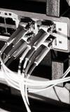 Optikfaserseilzüge angeschlossen an einen Schalter Stockfoto