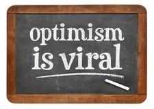 Optimism är virus- - svart tavlatexttecknet Fotografering för Bildbyråer