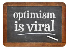 Optimism is viral - blackboard text sign Stock Image