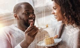 Optimistic couple eating tasty dessert in the cafe. Pleasant date. Optimistic young couple looking at each other with love while eating tasty dessert and Royalty Free Stock Photography