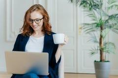 Optimistischer roter behaarter junger erfolgreicher weiblicher Freiberufler arbeitet entfernt in coworking Raum, macht Forschung, lizenzfreie stockfotos