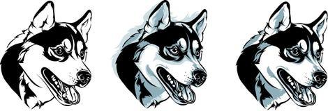 Options enrouées de tête de chien photo libre de droits