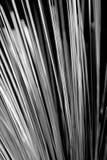 Optique des fibres Images stock