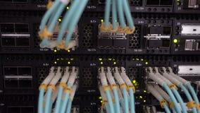 Optische Kabels van de telecommunicatie de Breedbandvezel Datacenterrek Knipoogje Groene Geleide Lichten stock videobeelden