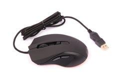 Optische Maus des schwarzen Computers Stockfoto