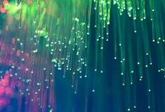 Optische Netzseilzüge und -servers Stockfotografie