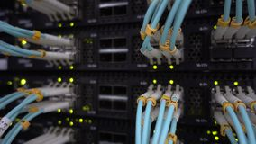 Optische server commutator Opvlammende lichten stock footage