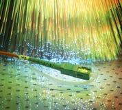 Optisches Netzkabel der Faser lizenzfreie stockbilder