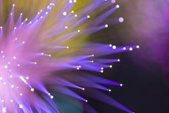 Optisches Netzkabel der Faser lizenzfreies stockfoto