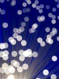 optisk fiber - Arkivbild