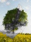 optisk illusion Arkivfoton