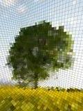 optisk illusion Fotografering för Bildbyråer