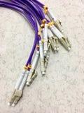Optiska kablar för fiber med kontaktdon i grupp Royaltyfri Foto