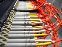 optiskt fibernätverk Royaltyfri Bild
