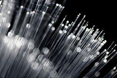 Optiskt för fiber med vit färg Arkivfoto