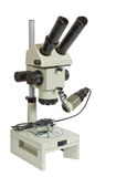 optiskt mikroskop Royaltyfri Foto