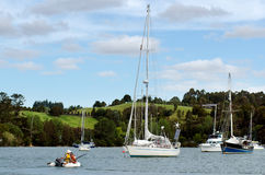 Opua marina at the  Bay of Islands New Zealand Royalty Free Stock Photos