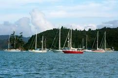 Opua marina at the  Bay of Islands New Zealand Stock Photo