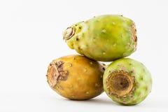Opuntia τόνου ficus-Indica Στοκ Εικόνες
