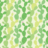 Opuntia cactus seamless pattern Stock Photography
