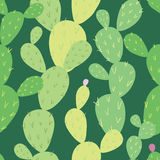 Opuntia cactus seamless pattern Stock Photography