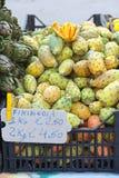 Opuntia de figue de Barbarie Photographie stock