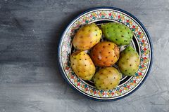 Opuntia ficus-indica, Barbary fig, cactus pear, spineless cactus, prickly pear, Indian fig opuntia on a plate for Stock Photo
