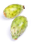 Opuntia ficus indica Stock Images