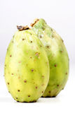 Opuntia ficus indica Royalty Free Stock Photography