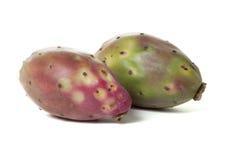 Opuntia fruit Stock Images