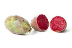 Opuntia fruit Stock Image