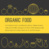 Opuscolo organico della frutta Immagini Stock Libere da Diritti