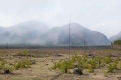 Opustoszała łąka w wiośnie przy stopą Sayan góry, Tunkinskaya dolina, Buryatia Zdjęcie Royalty Free
