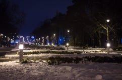 Opustoszały park w zimie przy nocą objętych krajobrazu śnieg fotografia stock