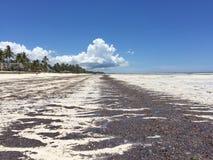 Opuszczać drogę plażowa odległość obrazy royalty free