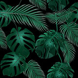 opuszczać palmy tropikalny Dżungla gąszcze bezszwowy kwiecisty wzoru Odizolowywający na czarnym tle ilustracja royalty ilustracja