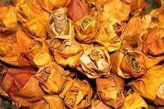 opuszczać róże Fotografia Stock
