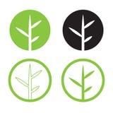 Opuszcza loga projektowi ustalonego wektor Natura logo w okręgu ilustracji